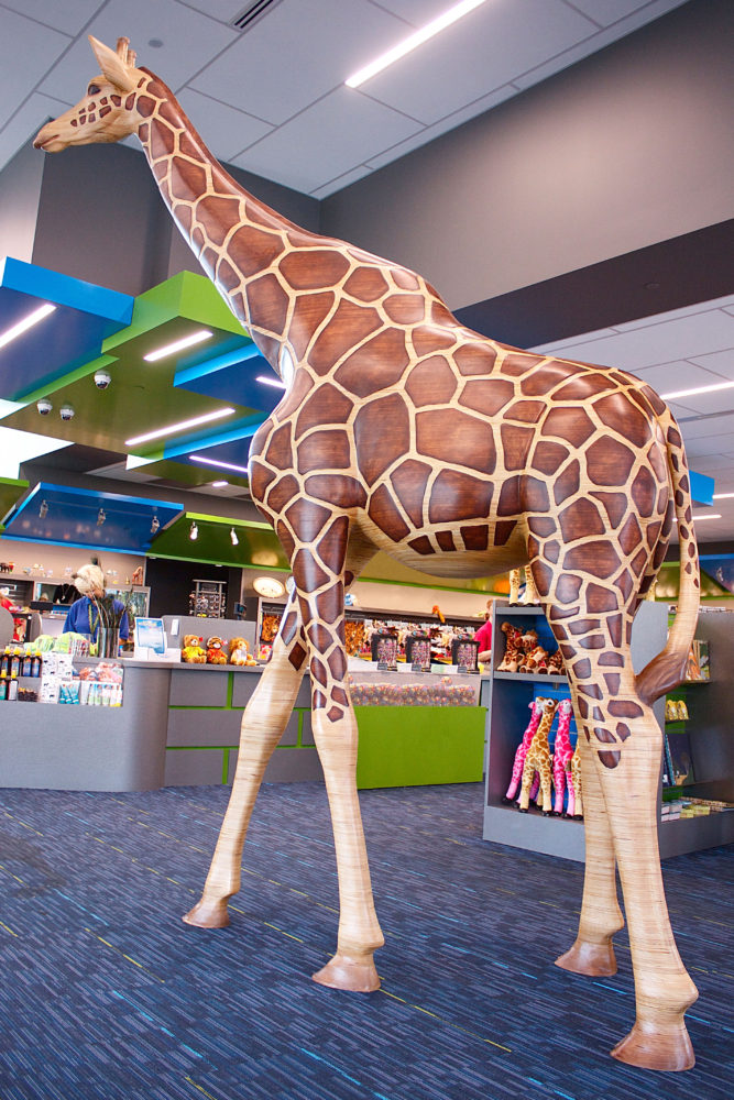 Giraffe Zoo Gift Shop